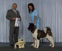 Ch. SheBogi's Blown Away ~ Nitro ~  Winning another Group 4th and his 6th Best Puppy In Group!!!!