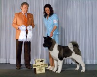 Ch. SheBogi's Blown Away ~  Group 4th Adult Group/Best Puppy In Group