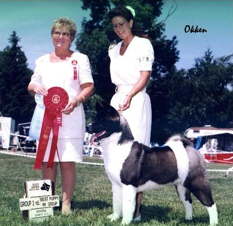 Group 2nd at 9 months old!  BISS Ch. SheBogi's Mirror Of The Law  *Okken*